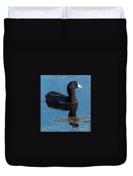 Adult American Coot Duvet Cover