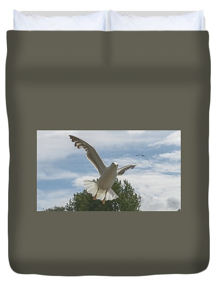 Adult Seagull In Flight Duvet Cover