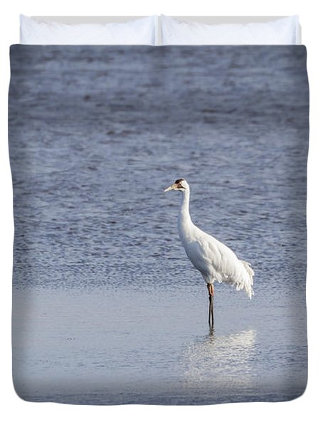 Adult Whooping Crane 2015-1 Duvet Cover by Thomas Young