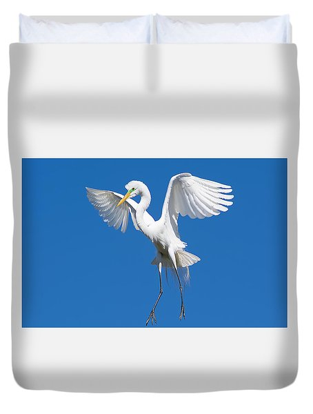 Aerial Ballet Duvet Cover by Kenneth Albin