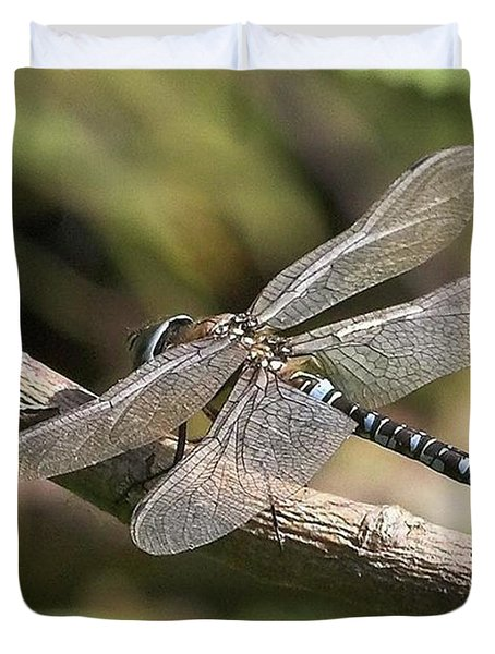 Aeshna Juncea - Common Hawker Taken At Duvet Cover by John Edwards