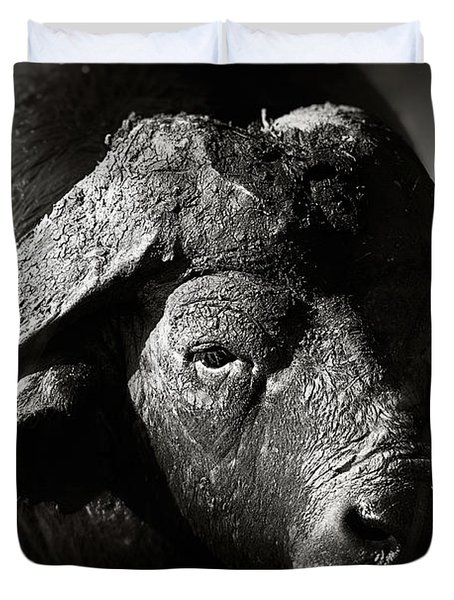 African Buffalo Bull Close-up Duvet Cover