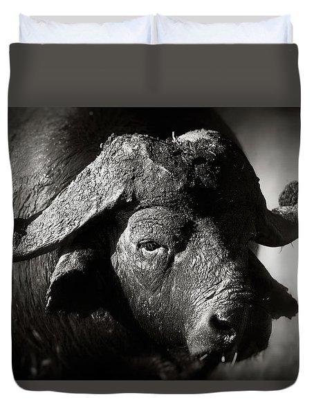 African Buffalo Bull Close-up Duvet Cover