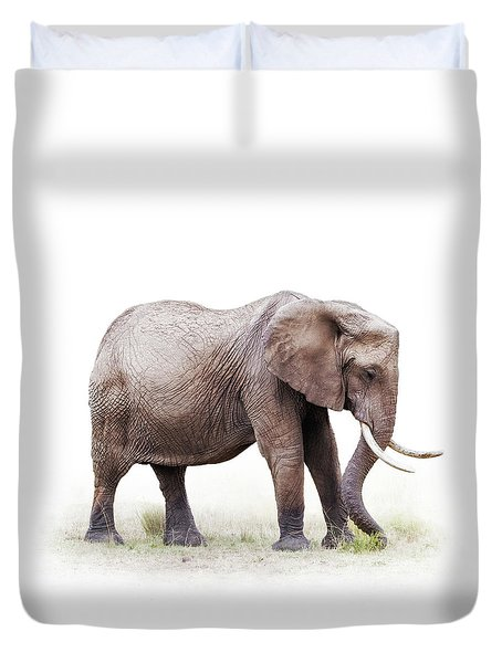 African Elephant Grazing - Isolated On White Duvet Cover