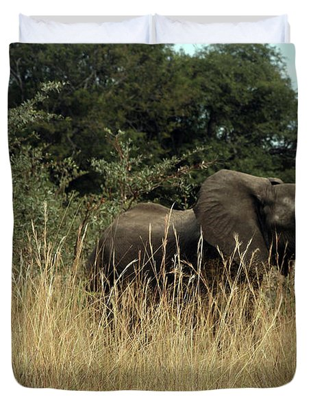 African Elephant In Tall Grass Duvet Cover
