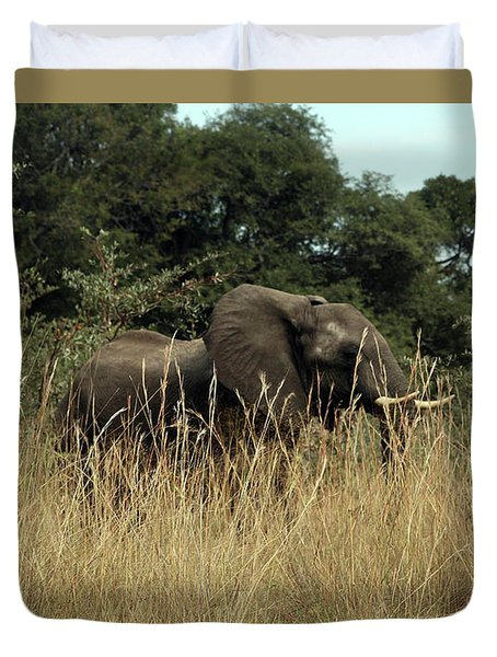 Duvet Cover featuring the photograph African Elephant In Tall Grass by Karen Zuk Rosenblatt