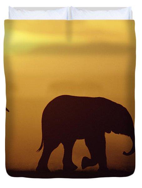 African Elephant Loxodonta Africana Duvet Cover by Karl Ammann