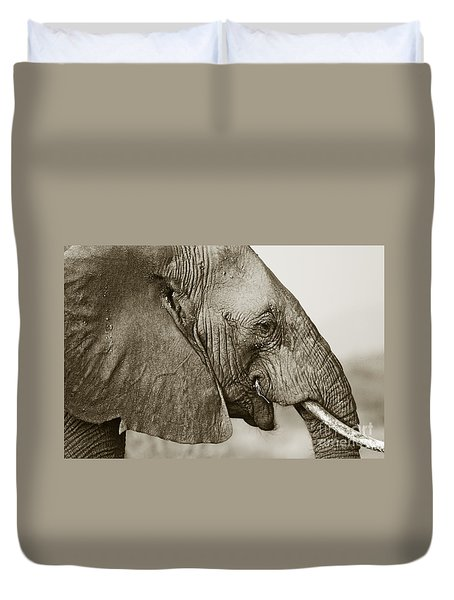 African Elephant Profile  Duotoned Duvet Cover
