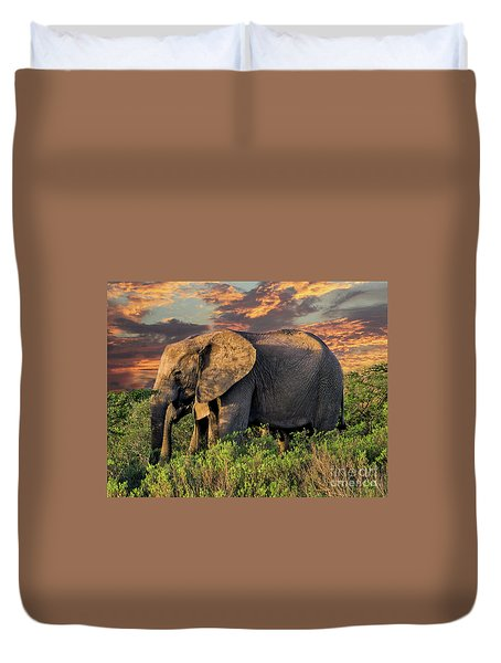 African Elephants At Sunset Duvet Cover