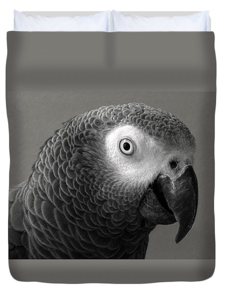African Gray Duvet Cover by Sandi OReilly
