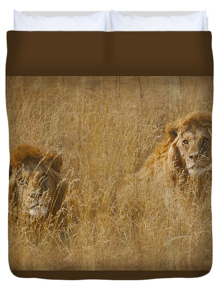 Duvet Cover featuring the tapestry - textile African Lion Brothers by Kathy Adams Clark