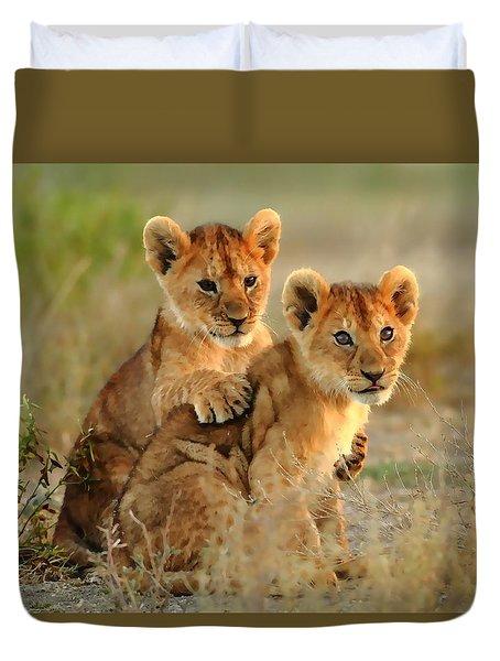 African Lion Cubs Duvet Cover by Maciek Froncisz