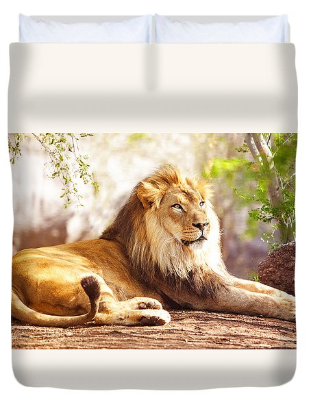 African Lion Laying In Forest Duvet Cover