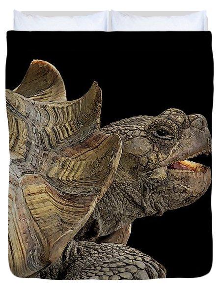 African Spurred Tortoise Duvet Cover