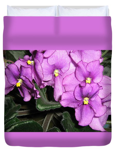 African Violets Duvet Cover by Barbara Yearty