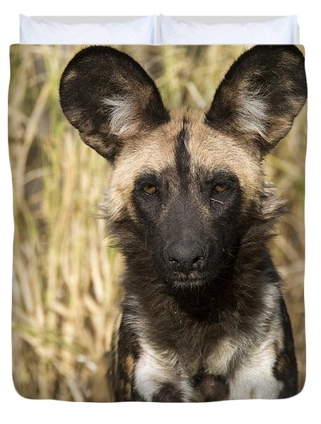 Duvet Cover featuring the photograph African Wild Dog Okavango Delta Botswana by Suzi Eszterhas