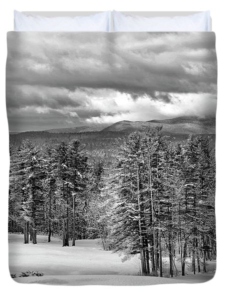 After The Snow  Duvet Cover