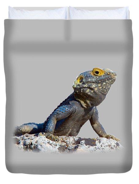 Agama Basking On A Rock T-shirt Duvet Cover