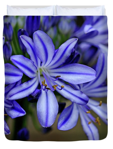 Agapanthus Blue Duvet Cover