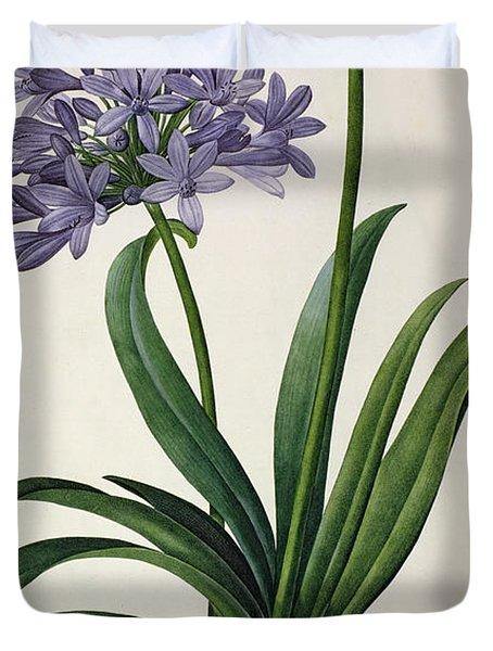 Agapanthus Umbrellatus Duvet Cover