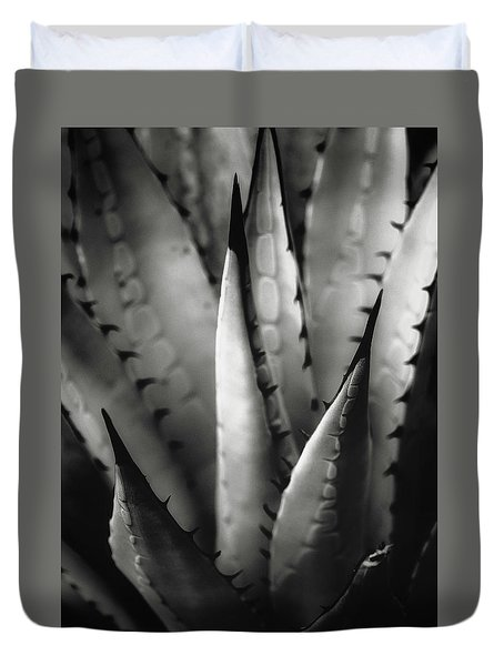 Duvet Cover featuring the photograph Agave And Patterns by Eduard Moldoveanu