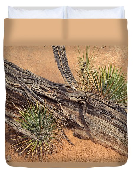 Agave And Weathered Branch Duvet Cover