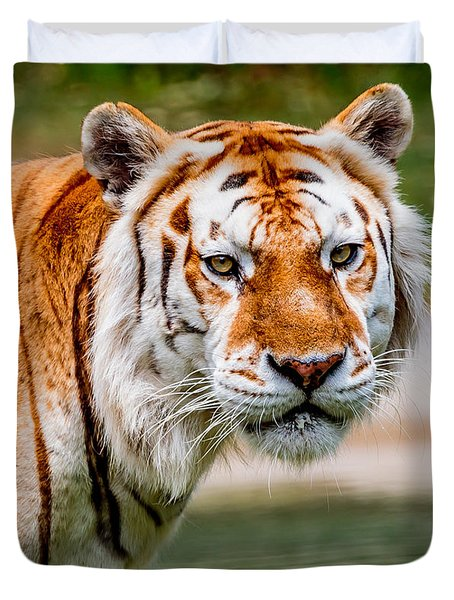 Aging Tiger Duvet Cover