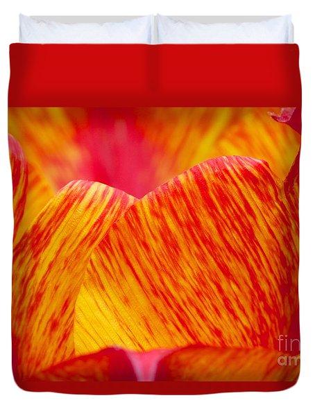 Aglow Duvet Cover by Jim Gillen