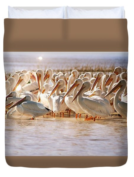 Aglow White Pelicans Duvet Cover
