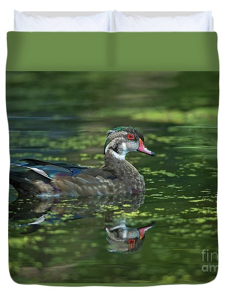 Duvet Cover featuring the photograph Aix Sponsa.. by Nina Stavlund
