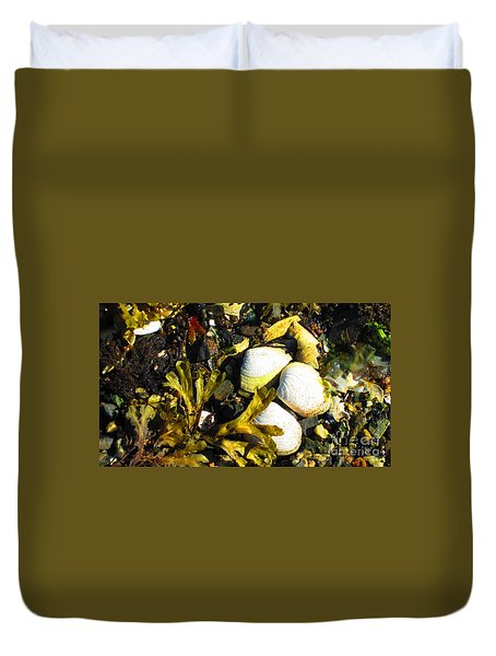 Alaska Clams Duvet Cover
