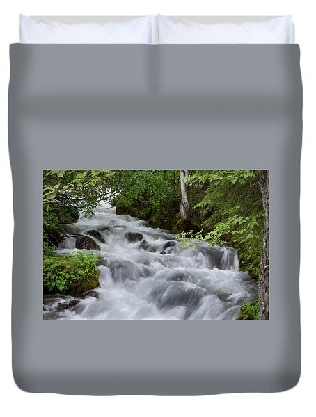 Alaska Waterfall Picture  Duvet Cover