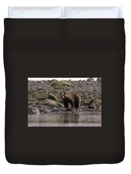 Alaskan Brown Bear Dining On Mollusks Duvet Cover