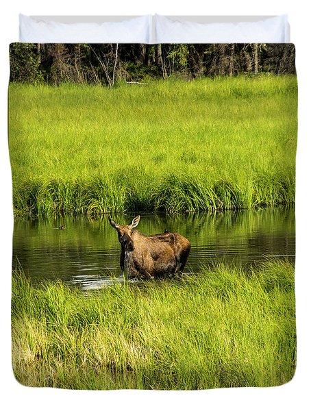 Alaskan Moose Duvet Cover