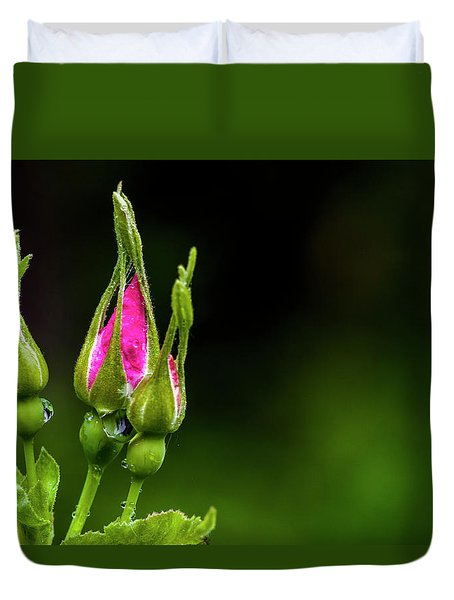 Duvet Cover featuring the photograph Alberta Rose Buds by Darcy Michaelchuk