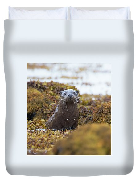 Alert Female Otter Duvet Cover