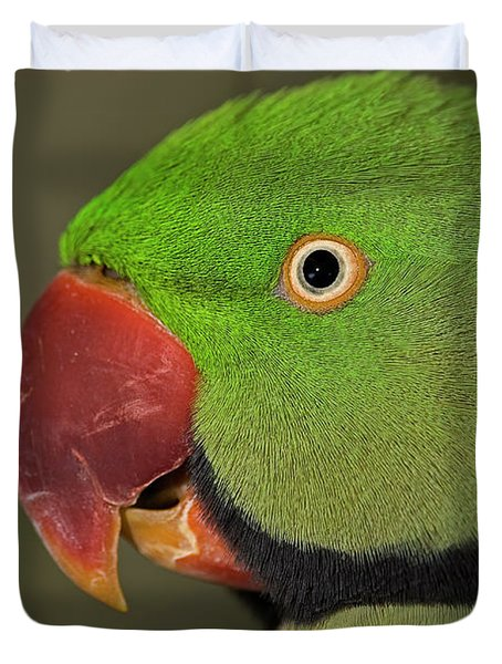 Duvet Cover featuring the photograph Alexandrine Parakeet by JT Lewis