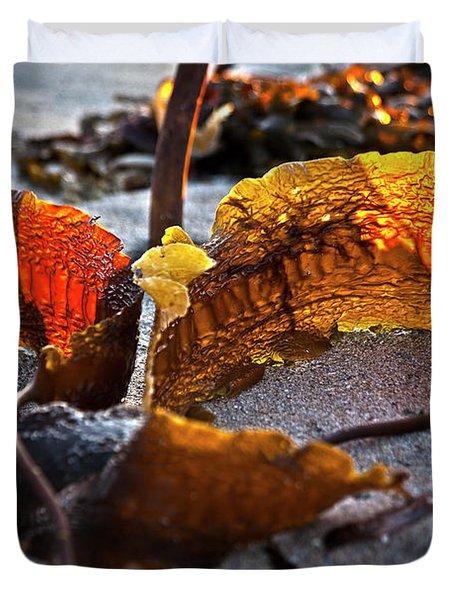 Algae At Low Tide Duvet Cover by Heiko Koehrer-Wagner
