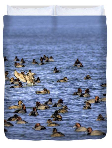 Algonac Redhead Ducks Duvet Cover