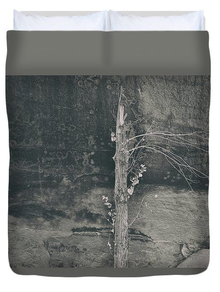 All Things Shall Pass Duvet Cover