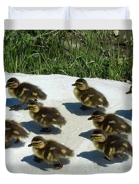 All Together Now Duvet Cover by Beth Saffer