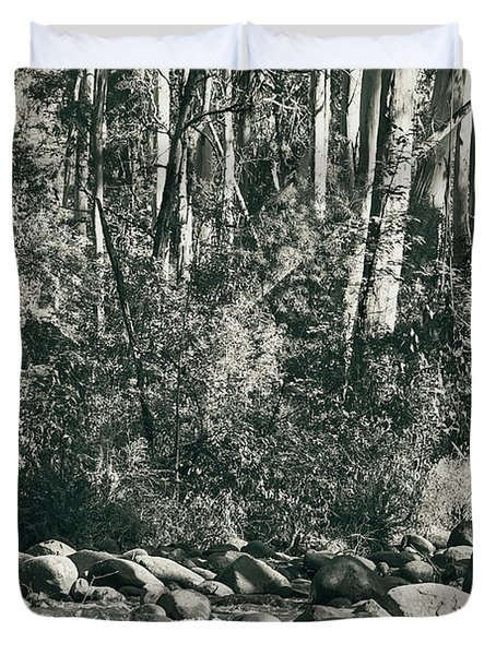 Duvet Cover featuring the photograph All Was Tranquil by Linda Lees