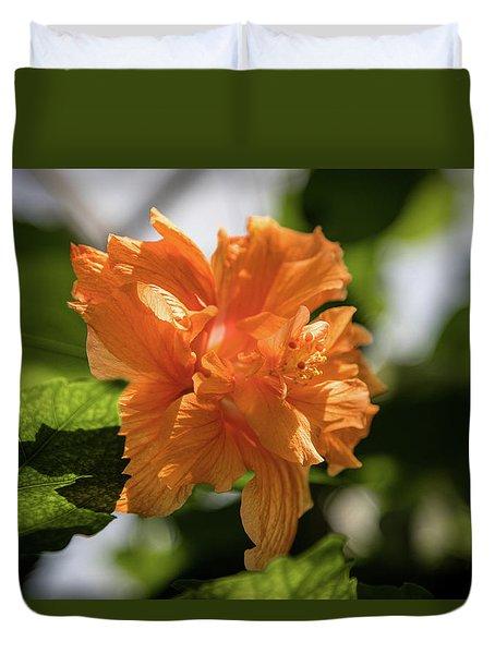 Allan Gardens Orange Duvet Cover