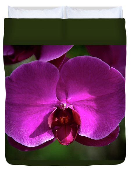 Allan Gardens Orchid Duvet Cover
