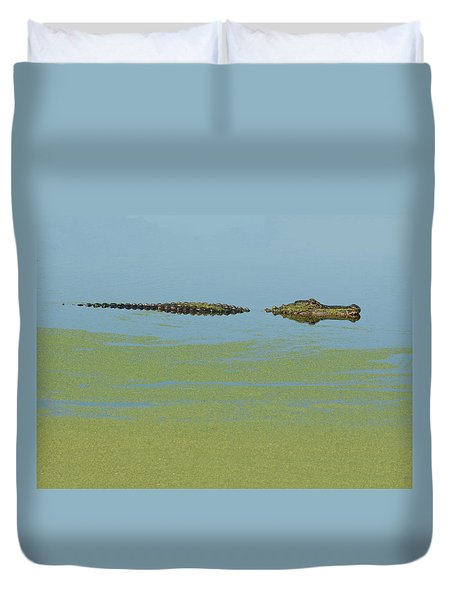 Duvet Cover featuring the photograph Alligator  by Carolyn Dalessandro