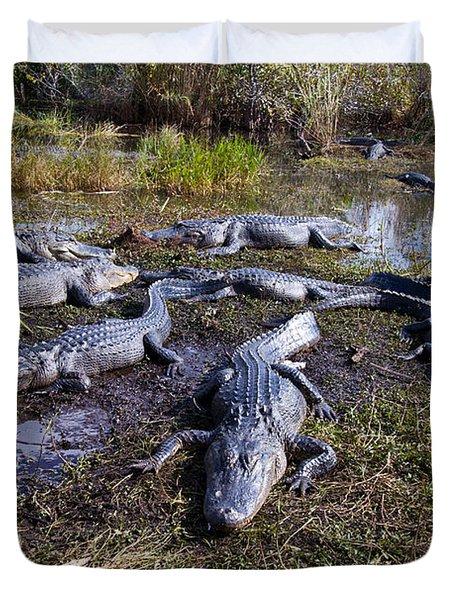Alligators 280 Duvet Cover
