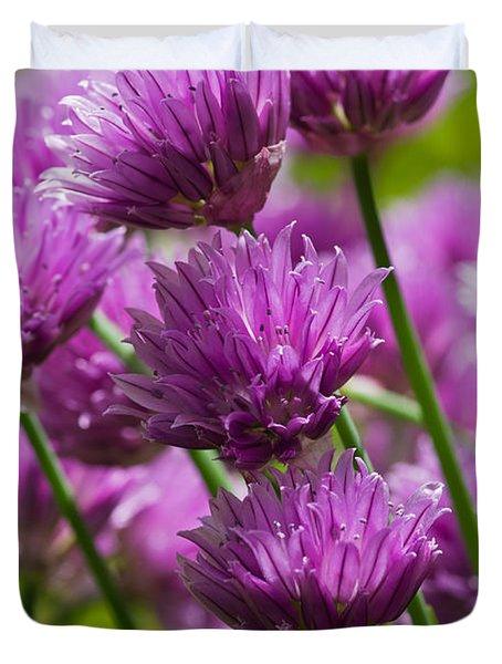 Allium Blooms Duvet Cover