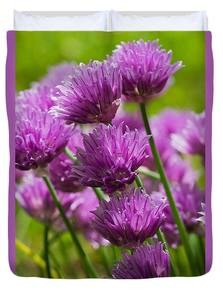 Allium Blooms Duvet Cover