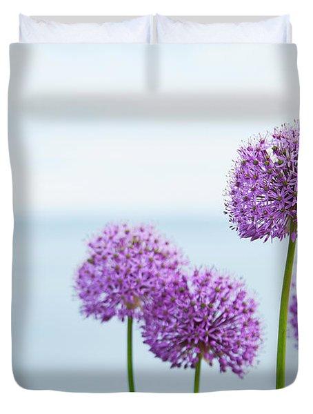 Alliums 1 Duvet Cover