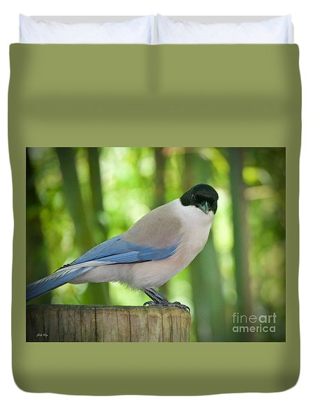 Allure Duvet Cover by Judy Kay